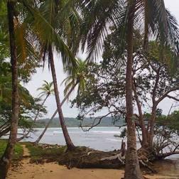 ...and suddenly I see the beach again