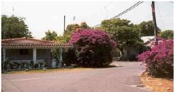 A street in San Carlos. I love it.