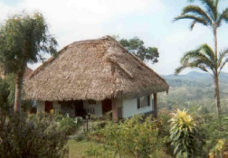 This is the bungalow in which we stayed