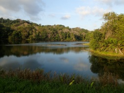 Lake Gatun guarantees a steady water supply for the Panama Canal