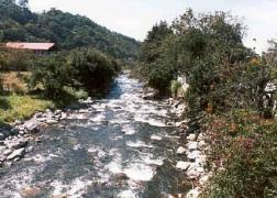 Caldera River near the Panamonte Hotel.