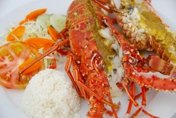 San Blas special Lobster
