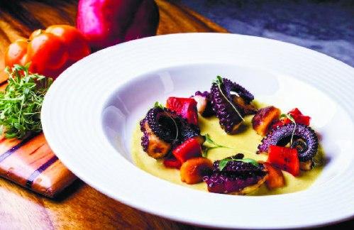 octopus in panama restaurant