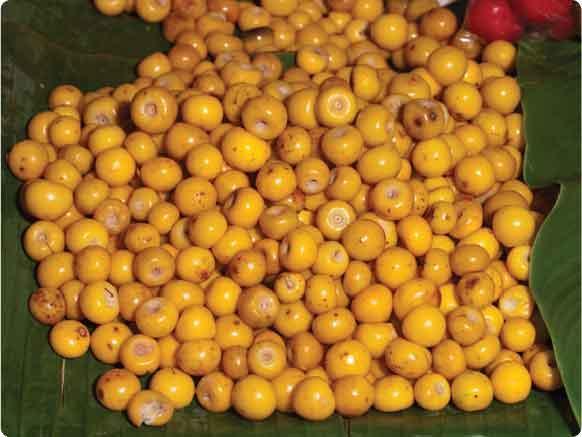 la fruta de nance
