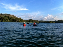 Kayaking tours