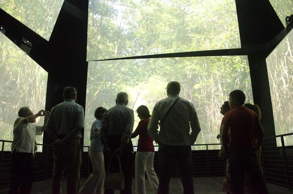 Biomuseo, evento Los Humedales.©Victoria Murillo /istmophoto.com