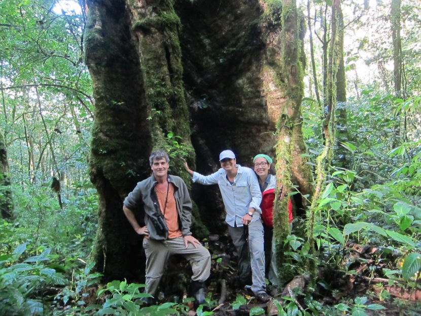 Volunteer vacation in Mount Totumas PrivateReserve
