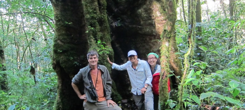 Volunteer vacation in Mount Totumas Private Reserve