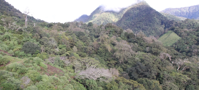 Panama Destination: Chiriquí Highlands