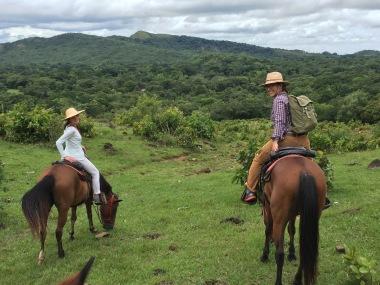 horseback riding in the highlands