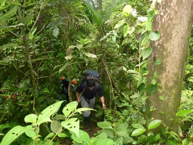 Darien Jungle Expedition in Pirre
